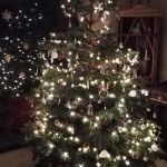 3 tips for How to Survive Christmas – from a Family Solicitor